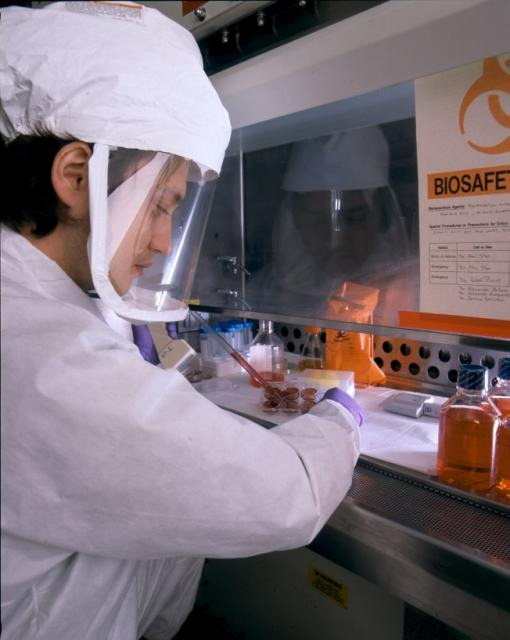 BSL 3 Nile Virus Research